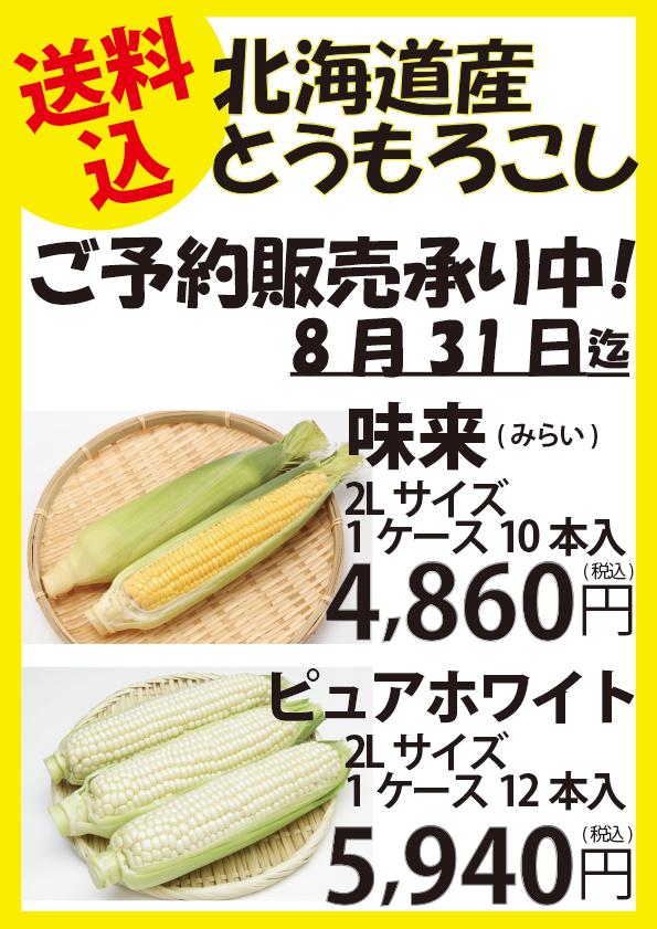 【ご予約受付中】北海道産 とうもろこし(送料込)
