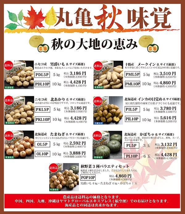 北海道産 秋野菜販売開始