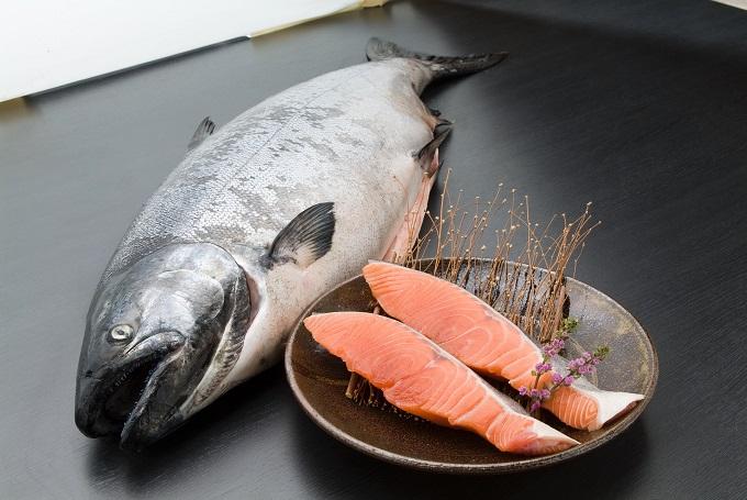 【冬の鮭】羅臼産キングサーモン