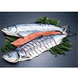 熟成秋鮭焼用中辛姿切身 (両面切身)